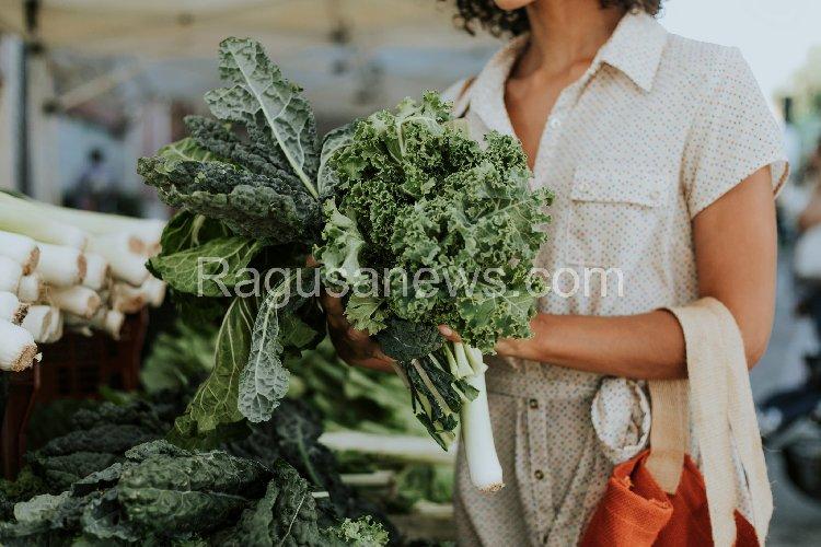 https://www.ragusanews.com//immagini_articoli/09-10-2019/la-dieta-cavolo-500.jpg