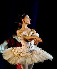 https://www.ragusanews.com//immagini_articoli/09-11-2018/festival-internazionale-balletto-caltagirone-avola-240.jpg