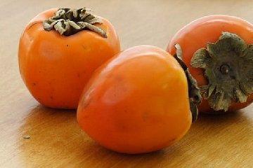 https://www.ragusanews.com//immagini_articoli/09-12-2018/cachi-mela-ottimi-dieta-dimagrante-240.jpg