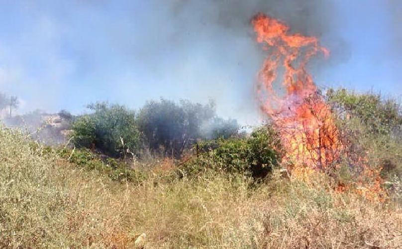 http://www.ragusanews.com//immagini_articoli/10-01-2015/scicli-giovane-incendia-sterpaglie-e-si-ustiona-500.jpg