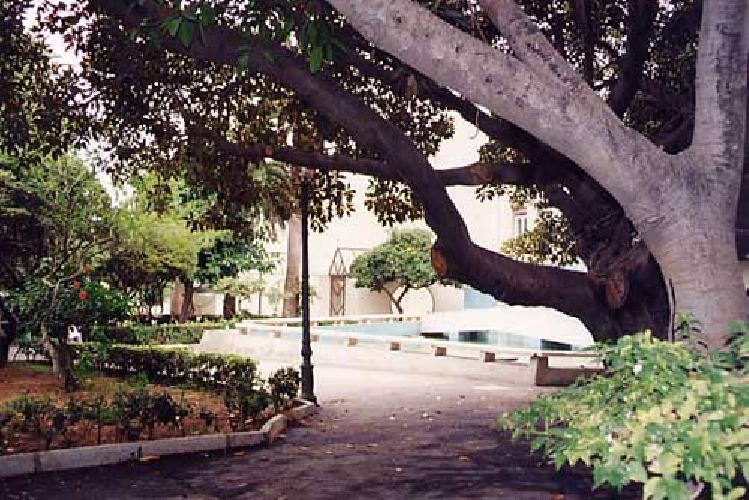 https://www.ragusanews.com//immagini_articoli/10-03-2014/pozzallo-il-sindaco-ho-chiuso-la-villa-per-degrado-500.jpg