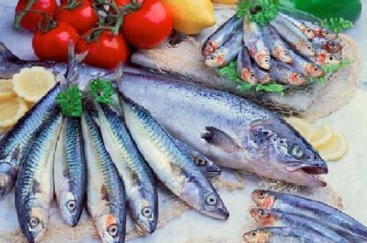 https://www.ragusanews.com//immagini_articoli/10-04-2016/festival-del-pesce-azzurro-a-marzamemi-500.jpg