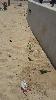 https://www.ragusanews.com//immagini_articoli/10-05-2015/la-spiaggia-di-marina-di-ragusa-e--sporca-100.jpg