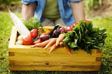 https://www.ragusanews.com//immagini_articoli/10-05-2019/dieta-di-primavera-tossine-stanchezza-e-insonnia-240.jpg