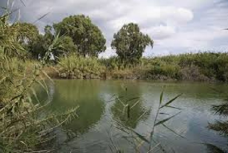 https://www.ragusanews.com//immagini_articoli/10-06-2019/uno-sversamento-di-idrocarburi-torrente-mongille-500.jpg