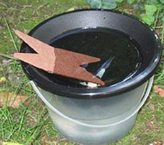 http://www.ragusanews.com//immagini_articoli/10-07-2014/una-trappola-per-zanzare-con-20-euro-video-500.jpg