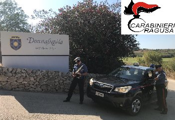 https://www.ragusanews.com//immagini_articoli/10-08-2019/arrestati-2-stranieri-per-tentato-furto-di-carrube-al-donnafugata-240.jpg