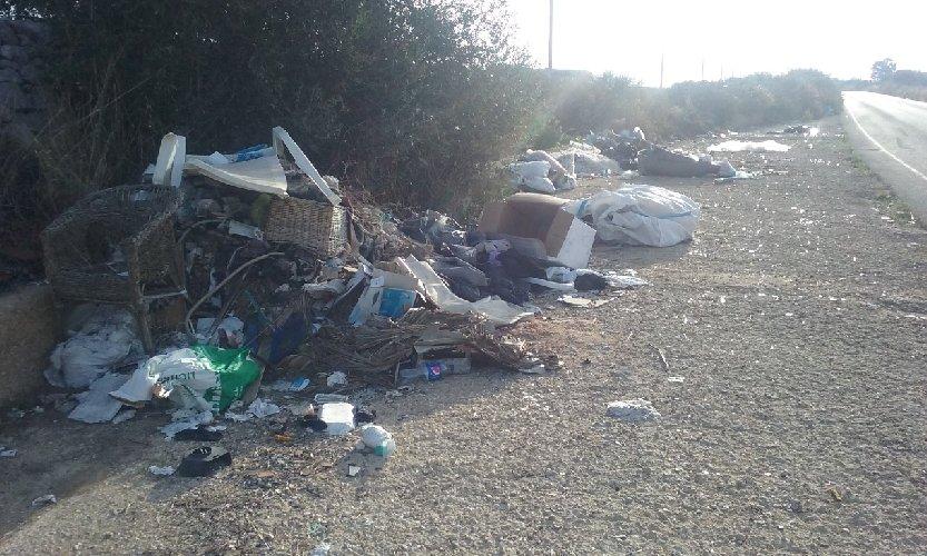 https://www.ragusanews.com//immagini_articoli/10-09-2018/rimosse-discariche-abusive-dalle-strade-provinciali-500.jpg