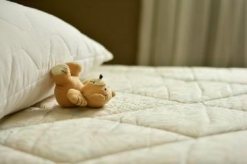 https://www.ragusanews.com//immagini_articoli/10-09-2020/dormire-melatonina-quali-sono-gli-alimenti-che-ne-contengono-di-piu-240.jpg