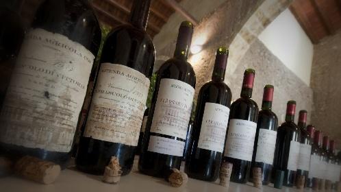 https://www.ragusanews.com//immagini_articoli/10-09-2021/il-vino-siciliano-piu-forte-dei-cambiamenti-climatici-280.jpg