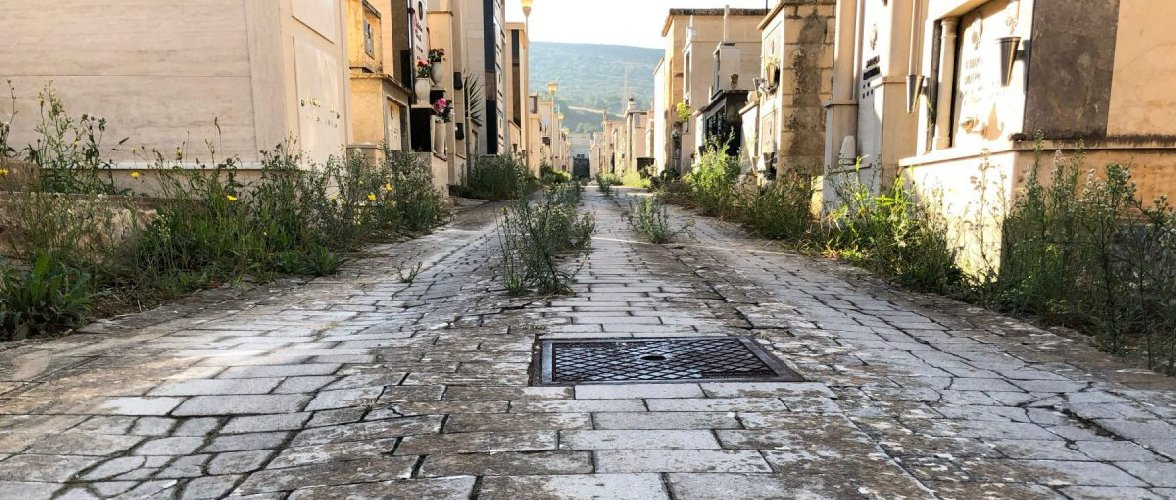 https://www.ragusanews.com//immagini_articoli/10-10-2018/cimitero-abbandonato-comiso-500.jpg