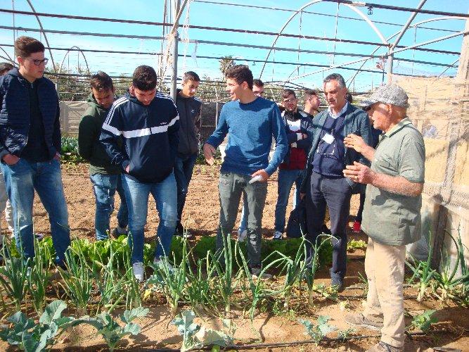 https://www.ragusanews.com//immagini_articoli/10-10-2019/1570722631-l-agrario-di-modica-visita-l-orticoltura-arrabito-a-donnalucata-1-500.jpg