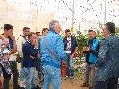 https://www.ragusanews.com//immagini_articoli/10-10-2019/l-agrario-di-modica-visita-l-orticoltura-arrabito-a-donnalucata-100.jpg