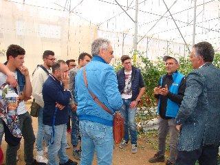 https://www.ragusanews.com//immagini_articoli/10-10-2019/l-agrario-di-modica-visita-l-orticoltura-arrabito-a-donnalucata-240.jpg