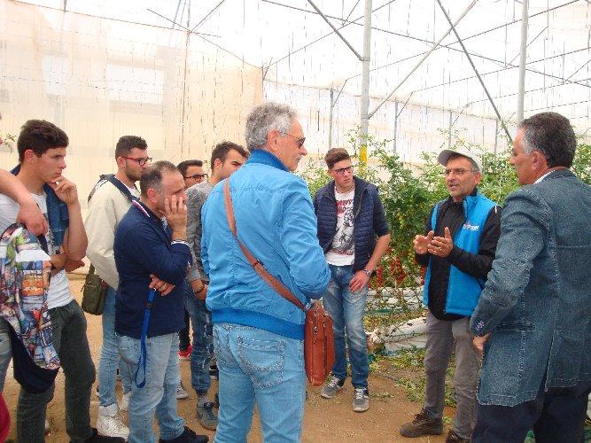 https://www.ragusanews.com//immagini_articoli/10-10-2019/l-agrario-di-modica-visita-l-orticoltura-arrabito-a-donnalucata-500.jpg