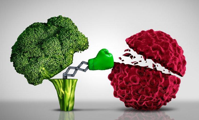 https://www.ragusanews.com//immagini_articoli/10-10-2020/alimentazione-e-tumori-quale-dieta-scegliere-500.jpg