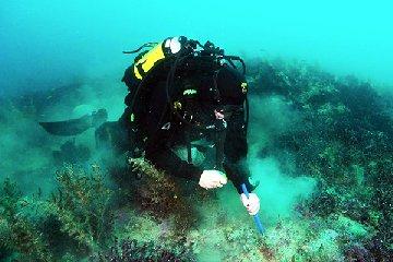 https://www.ragusanews.com//immagini_articoli/10-12-2019/scoperti-due-vulcani-sottomarini-al-largo-sicilia-240.jpg