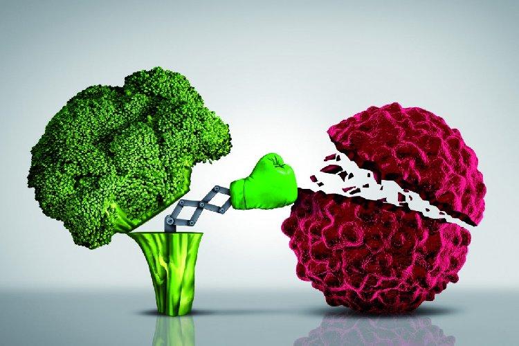 https://www.ragusanews.com//immagini_articoli/11-01-2020/prevenire-con-la-dieta-i-tumori-500.jpg