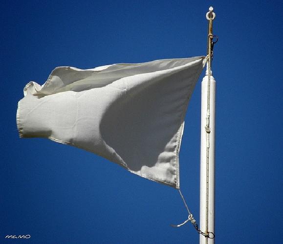 http://www.ragusanews.com//immagini_articoli/11-05-2015/sul-ponte-sventola-bandiera-bianca-500.jpg