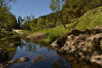 https://www.ragusanews.com//immagini_articoli/11-05-2019/trekking-a-monte-lauro-240.jpg