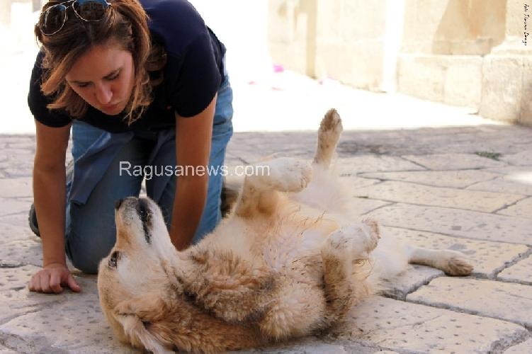 http://www.ragusanews.com//immagini_articoli/11-06-2014/il-film-italo-il-15-giugno-a-taormina-500.jpg