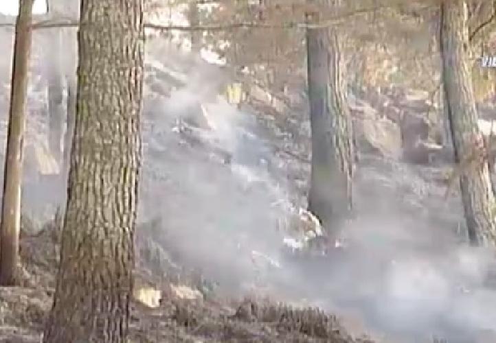 http://www.ragusanews.com//immagini_articoli/11-06-2014/incendio-di-vaste-proporzioni-in-un-bosco-di-giarratana-2-canadair-500.jpg