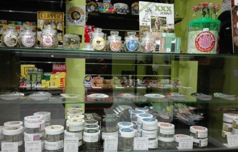https://www.ragusanews.com//immagini_articoli/11-07-2019/la-cassazione-vendere-la-cannabis-light-e-reato-500.jpg