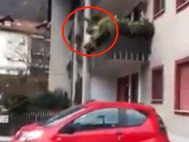 https://www.ragusanews.com//immagini_articoli/11-07-2019/scicli-donna-cade-balcone-elisoccorsa-a-catania-500.jpg