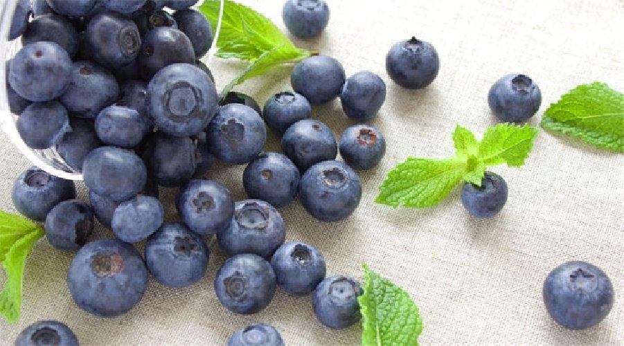 https://www.ragusanews.com//immagini_articoli/11-08-2019/alimenti-perfetti-per-la-buona-salute-dei-reni-500.jpg