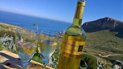https://www.ragusanews.com//immagini_articoli/11-08-2020/casa-vinicola-fazio-alla-marina-di-trapani-240.jpg
