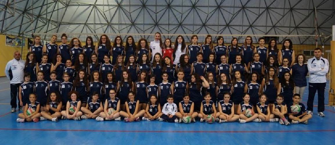 https://www.ragusanews.com//immagini_articoli/11-09-2014/volley-la-siklani-riparte-con-i-corsi-di-volley-e-minivolley-500.jpg