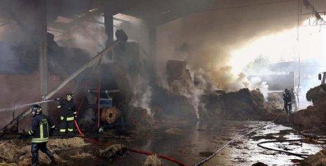https://www.ragusanews.com//immagini_articoli/11-10-2018/acate-fulmine-colpisce-stalla-incendia-240.jpg