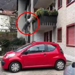 https://www.ragusanews.com//immagini_articoli/11-11-2019/comiso-donna-cade-balcone-e-muore-240.png