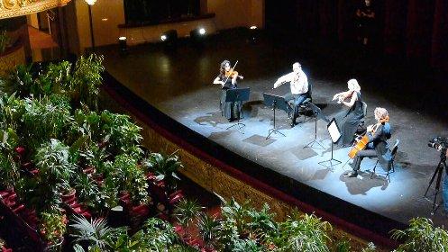 https://www.ragusanews.com//immagini_articoli/11-12-2020/concerto-di-natale-con-piante-come-spettatori-a-ragusa-280.jpg
