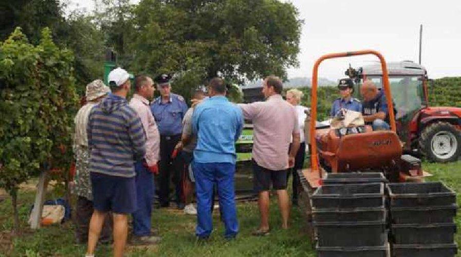 http://www.ragusanews.com//immagini_articoli/12-01-2018/ragusa-lavoro-nero-irregolarita-denunciate-aziende-edili-agricole-500.jpg
