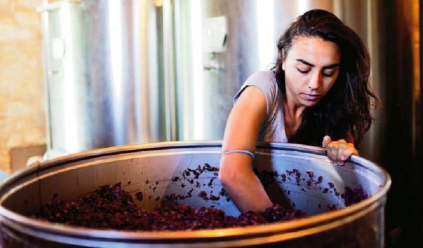 https://www.ragusanews.com//immagini_articoli/12-03-2017/arianna-occhipinti-racconta-vino-milano-500.jpg