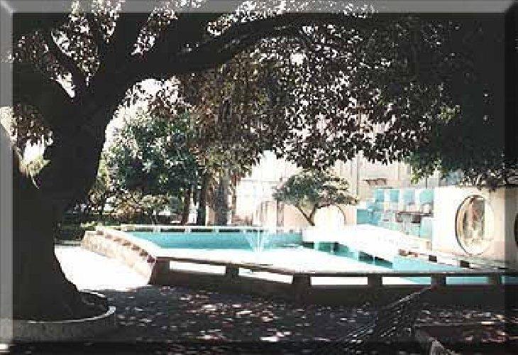 https://www.ragusanews.com//immagini_articoli/12-03-2019/uccisi-alcuni-animali-villa-comunale-pozzallo-500.jpg