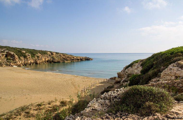 https://www.ragusanews.com//immagini_articoli/12-06-2018/migranti-sbarcati-spiaggia-calamosche-noto-500.jpg
