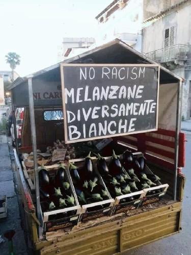 https://www.ragusanews.com//immagini_articoli/12-06-2020/sicilia-le-melanzane-diversamente-bianche-500.jpg