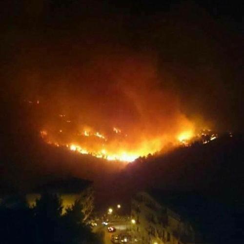 https://www.ragusanews.com//immagini_articoli/12-07-2017/incendi-sicilia-palermo-messina-enna-aprono-inchiesta-500.jpg