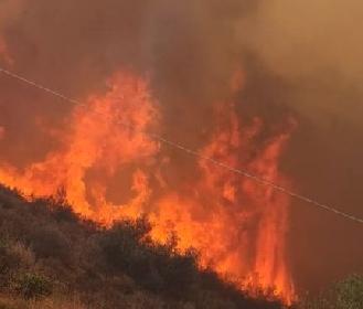 https://www.ragusanews.com//immagini_articoli/12-07-2021/incendio-ad-acate-brucia-la-periferia-cittadina-video-280.jpg