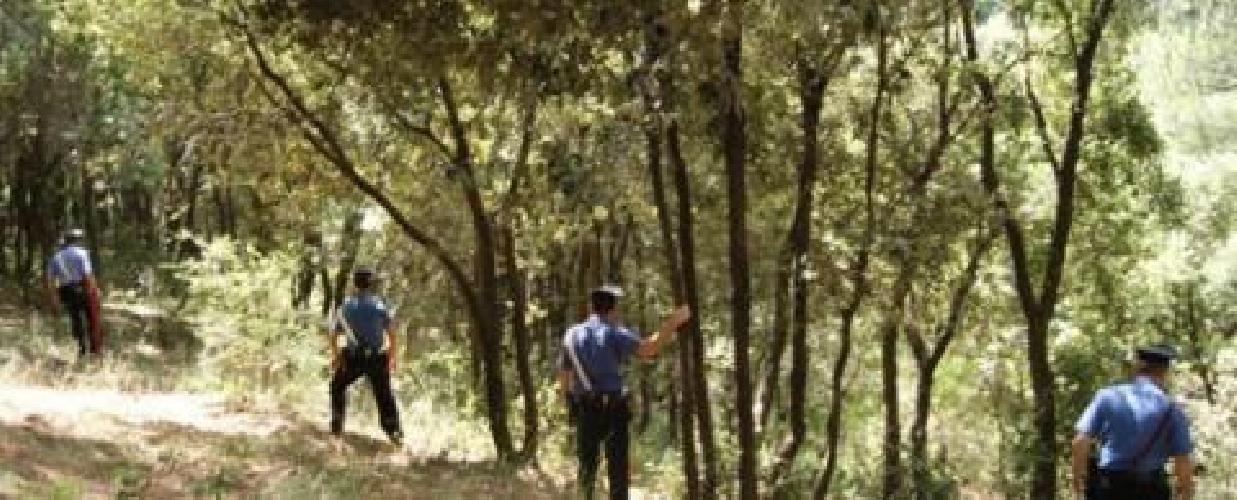 http://www.ragusanews.com//immagini_articoli/12-08-2014/carabinieri-riaffidano-bambino-smarrito-ai-genitori-500.jpg