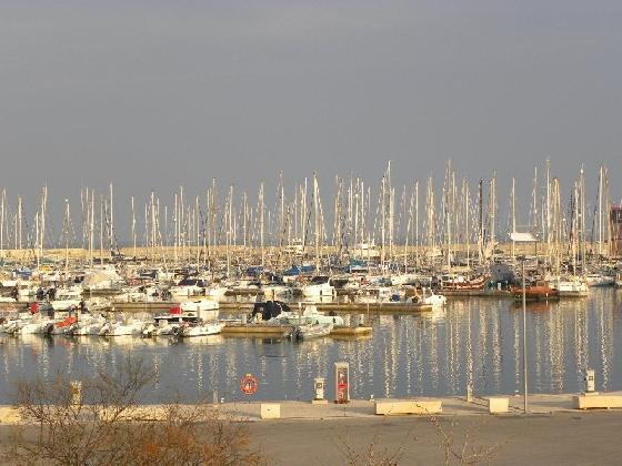 http://www.ragusanews.com//immagini_articoli/12-08-2016/route-du-jasmin-al-porto-di-marina-420.jpg