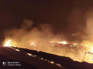 https://www.ragusanews.com//immagini_articoli/12-08-2021/giarratana-video-e-foto-dell-incendio-a-calaforno-280.jpg