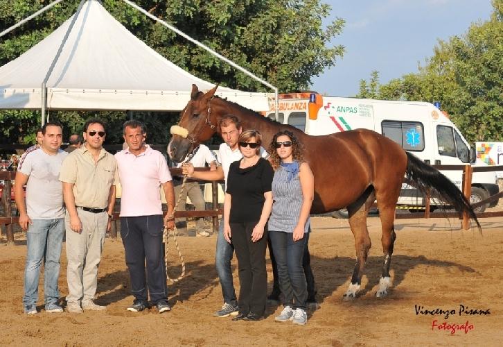https://www.ragusanews.com//immagini_articoli/12-09-2011/ispica-equitazione-successo-di-pubblico-al-trofeo-piero-caccamo-500.jpg