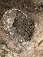 https://www.ragusanews.com//immagini_articoli/12-11-2019/lo-scheletro-con-la-moneta-per-pagare-caronte-240.jpg