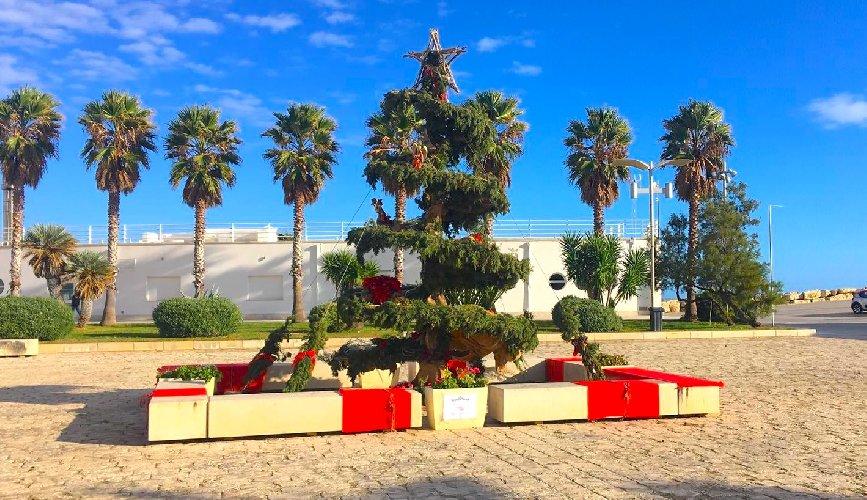 https://www.ragusanews.com//immagini_articoli/12-12-2018/marina-ragusa-aspettano-befana-500.jpg