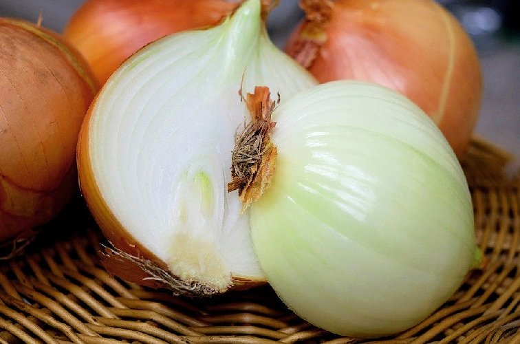 https://www.ragusanews.com//immagini_articoli/13-02-2020/dimagrire-con-le-cipolle-le-proprieta-alimentari-di-questo-ortaggio-500.jpg
