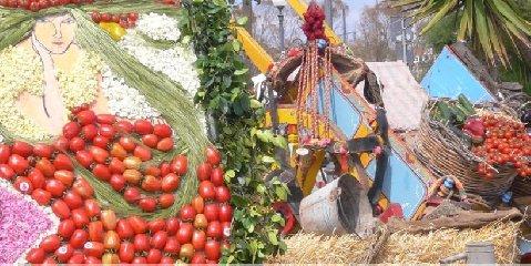 https://www.ragusanews.com//immagini_articoli/13-05-2019/non-si-perda-il-nome-sagra-pomodoro-a-sampieri-240.jpg