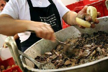 https://www.ragusanews.com//immagini_articoli/13-08-2018/street-food-cefalu-mangi-anche-240.jpg